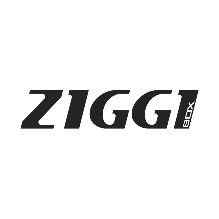 ZIGGI